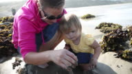Mother and daughter looking in tidepool video