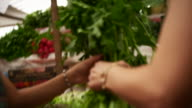 Mother and daughter pick fresh produce at a street market video