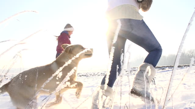 SLO MO Mother And Daughter Running With Puppy In Snow video