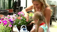 Mother And Daughter Watering Plants In Greenhouseouse video