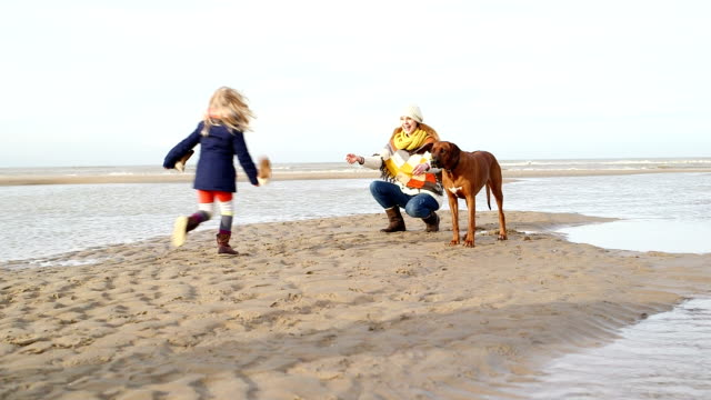 WS Mother and daughter with dog on beach video
