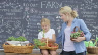 Mother and Daughter Working at Farm Stand video
