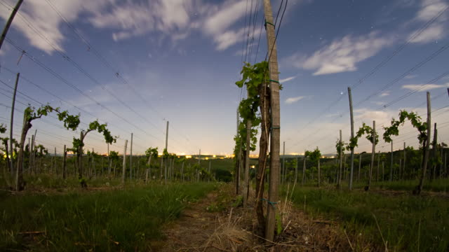 HD Motion Time-Lapse: Cloudscape Over Vineyard At Dusk video