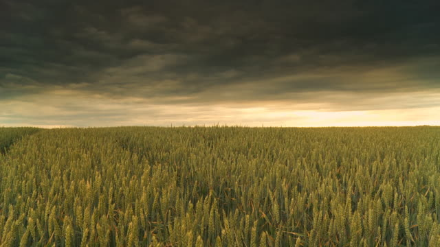 HD Motion Time-Lapse: Stormy Sky Over The Countryside video