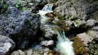 Motion view of Wild river in Alps Mountains, clean blue water and green forest. Triglav National Park, Julian Alps, Bohinj valley, Slovenia. video