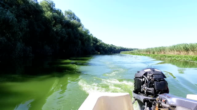 Motor Boat On Danube Delta On A Beautiful Day video