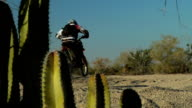 Motorcross rider and cactus video