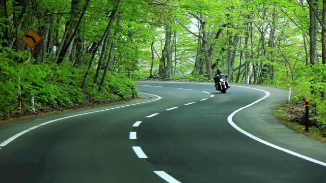 Motorcyclist driving along a winding road in the forest video
