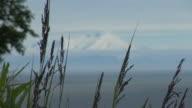 Mount Iliamna video