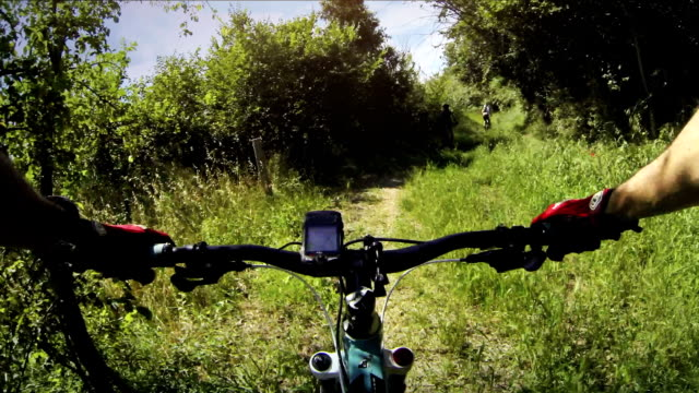 Mountain bicycle in group: wild nature in Tuscany video