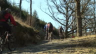 Mountain Bike / Biking 6 - HD & PAL video