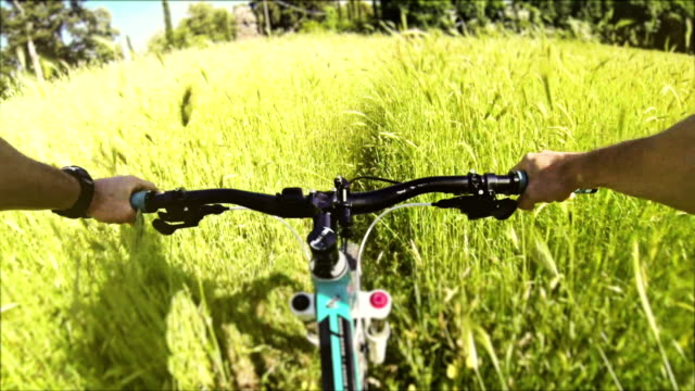 Mountain Bike: immersed in wild nature video