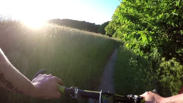 Mountain Bike Video: a Single Track in the Fores video