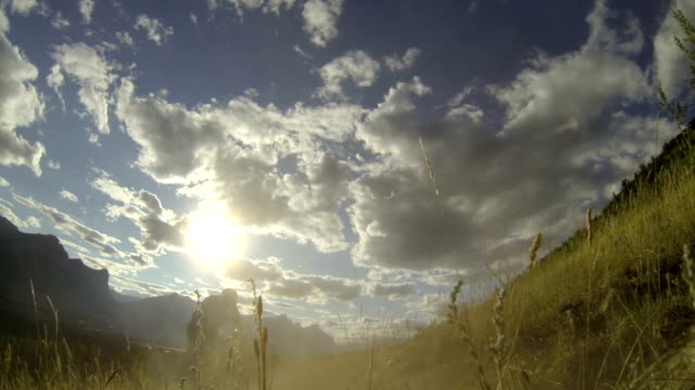Mountain bikers descend mountain track at sunrise video