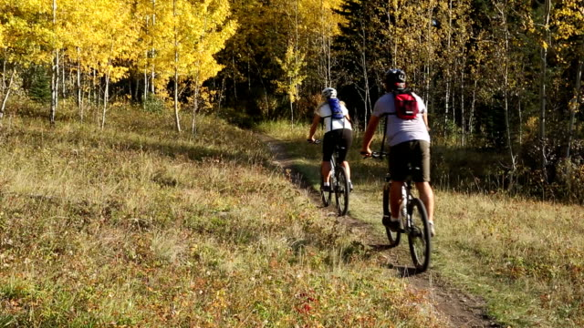 Mountain biking couple descends trail into autumn forest video