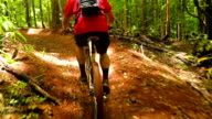Mountain Biking Forest Trail. Young Fit Man Rides Mountain Bike Uphill. Outdoor Active Summer Lifestyle. Steadicam Shot. video