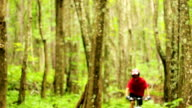 Mountain Biking Forest Trail. Young Fit Man Rides Mountain Bike. Outdoor Active Summer Lifestyle. Steadicam Shot. video