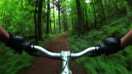 HD Mountain Biking Through Green Forest video