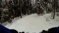 Mountain Biking Through Snowy Forest POV video