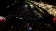 HD Mountain Biking Through Winter Forest video