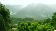 mountain forest landscape with misty morning and sunlight as a background. Thailand video