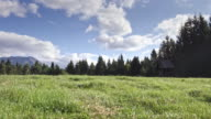 DS Mountain meadow on sunny day video