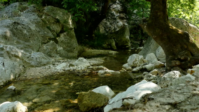 Mountain River in Greece video