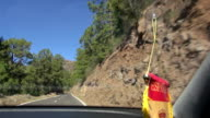 mountain road with pine trees from car window video