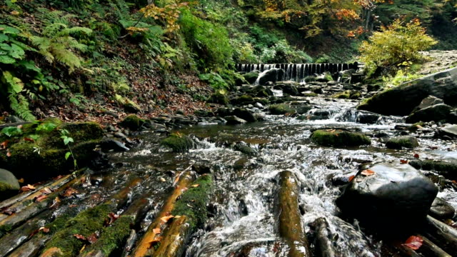 Mountain stream river with rapids video