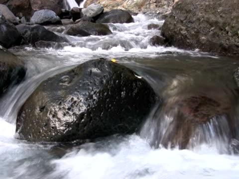 NTSC : Mountain stream video