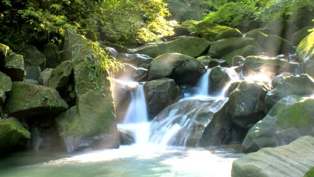 Mountain stream (timelapse) video