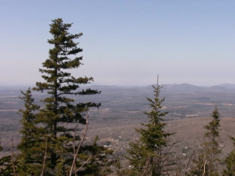 Mountain view and treetops. 2 of Two. video