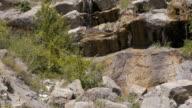 Mountain waterfall. Crimea. Zelenogorie video