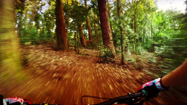 Mountainbike in action: PoV fast ride in the forest video
