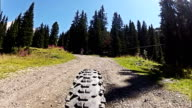 Mountainbike Rear Point of View on the Dolomites video