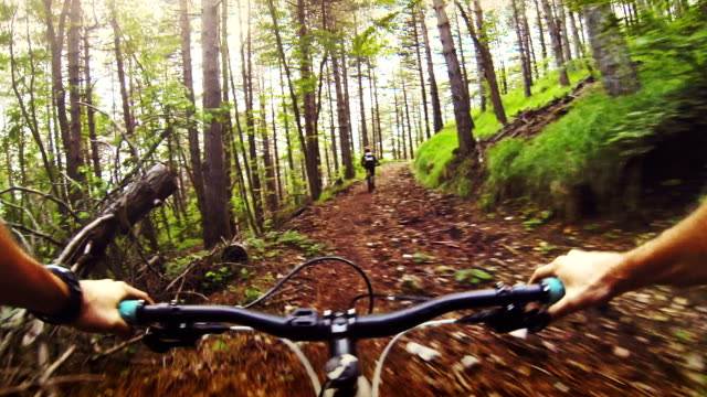 Mountainbike ride in the forest video
