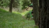 Mountainbiker driving down a hill through some trees video