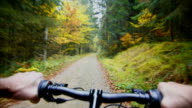 HD Mountainbiking in autumn forest POV TL video