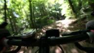 HD: Mountainbiking in forest video