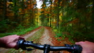HD Mountainbiking through autumn forest POV video