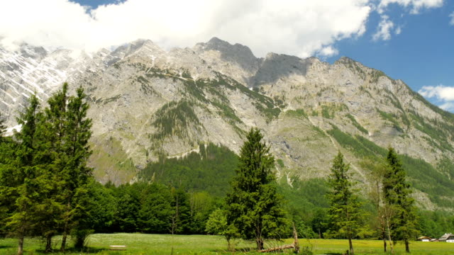Mountains in the alps of bavaria with trees. video