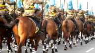 Mounted soldiers in a parade. video