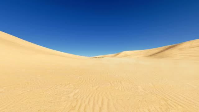 Movement through desert to oasis video