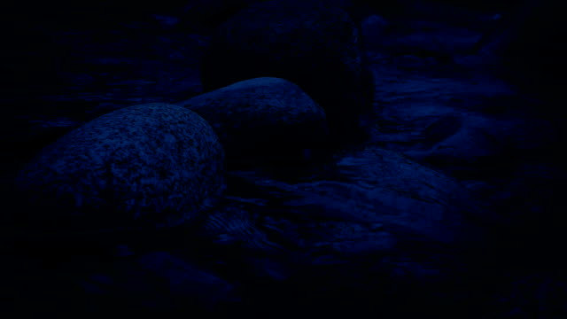 Moving Along River At Night video