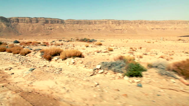moving at the bottom of mitzpe ramon crater video