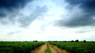 Moving Clouds at Farm Cassava video