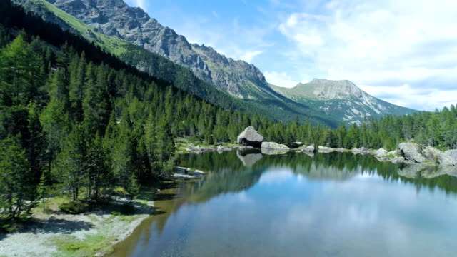 moving forward to clear blue lake and pine woods forest mountain valley in summer.Europe Alps outdoor green nature scape mountains wild aerial establisher.4k drone flight establishing shot video