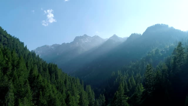 moving forward to  pine woods forest and mountain valley with sun flare in summer day.Europe Italy Alps outdoor green nature scape mountains wild aerial establisher.4k drone flight establishing sho video