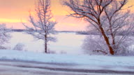 Moving into winter sunrise scenic, between snow frosted trees video
