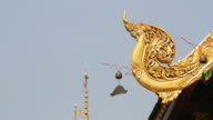 Moving of Buddhist Temple Bell video